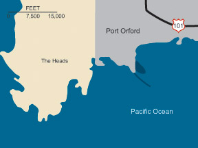 Graphic illustration map of Port Orford