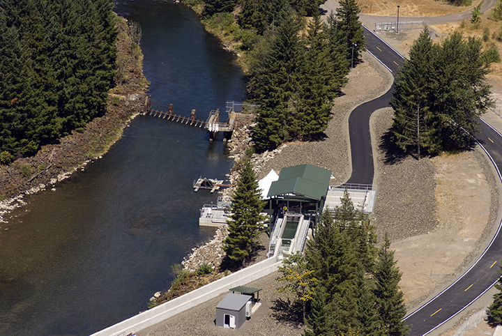 aerial view of the adult fish collection facility
