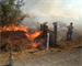 U.S. Bureau of Land Management crews executed controlled burns on about 54 acres at Fern Ridge Reservoir west of Eugene, Ore., Sept. 29-30.  These burns are critical to protecting and restoring valuable biological diversity in prairie and savanna ecosystems.