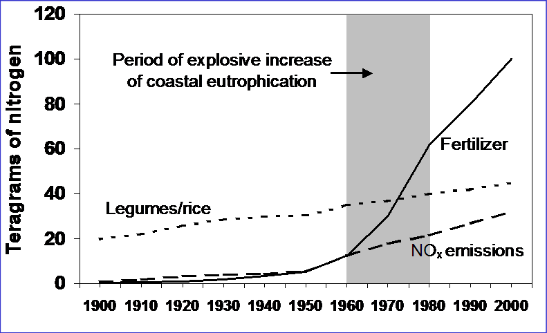 Graph showing nitrogen impacts over years from 1900 to 2000