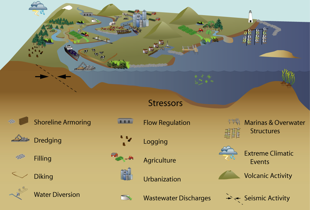 Graphical depiction of ecosystem stressors